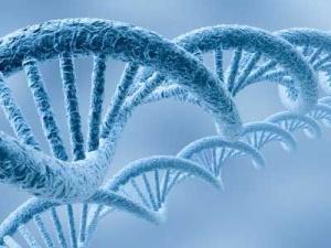 DNA_geni_leggere-il-dna